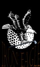 iron_eagle_72 (1)